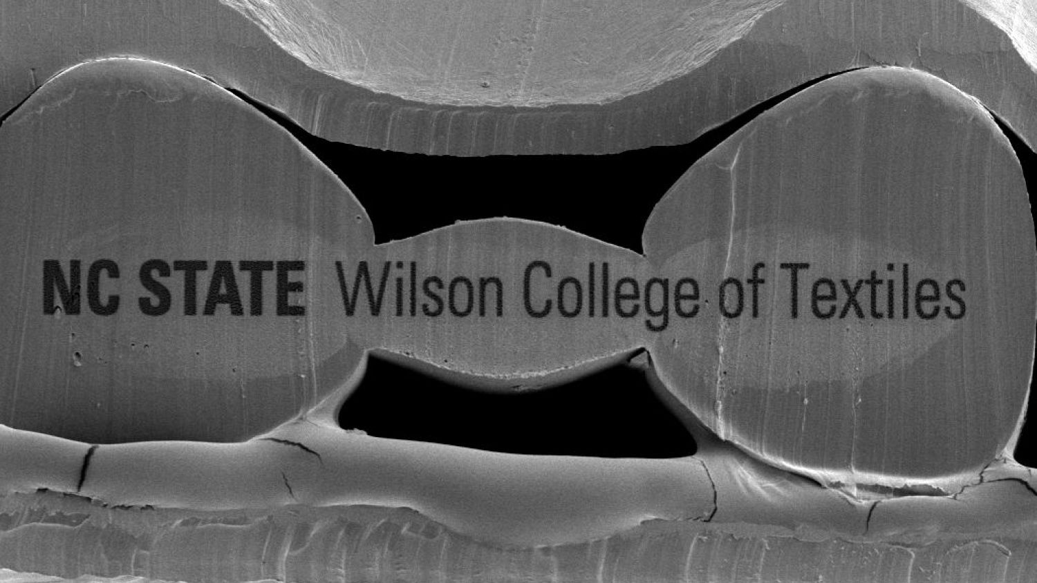 Wilson College of Textiles logo engraved on cross-section of tricomponent fiber
