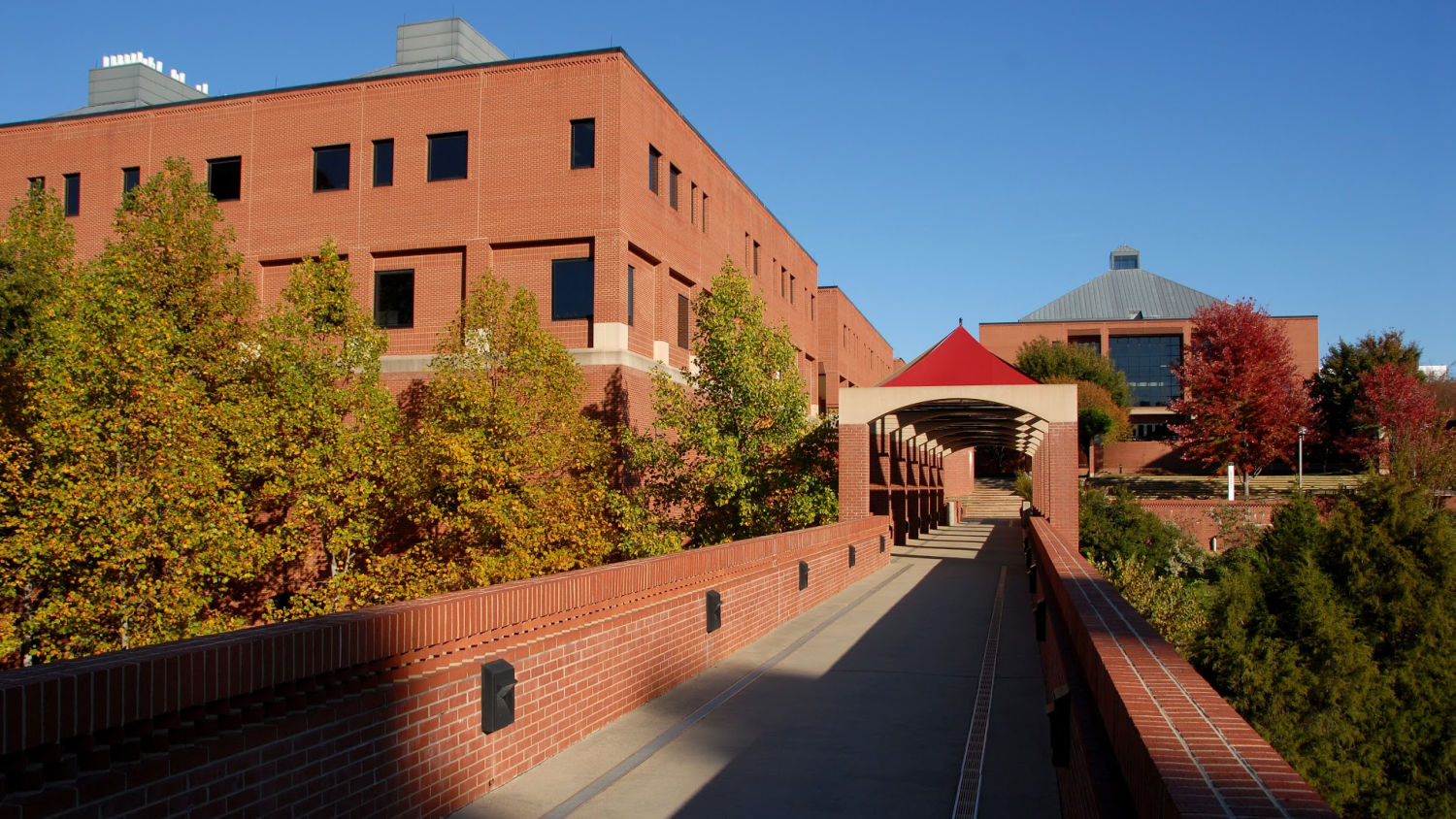 Brick pathway leading to the Wilson College of Textiles