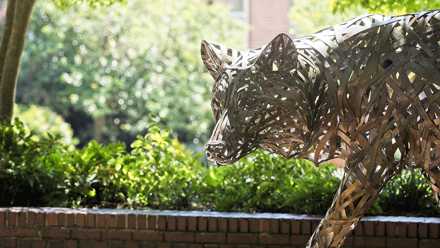Picture of the copper wolves at Wolf Plaza