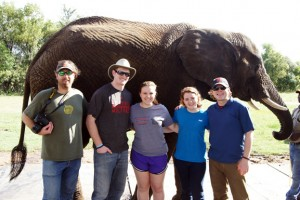 Five students and professors stand smiling in front of an elephant