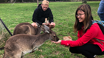 Wilson College student letting a kangaroo eat out of her hand.